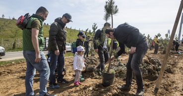 ICA employees welcome spring by planting trees